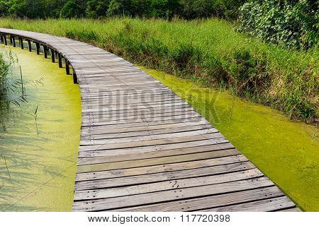 Wooden bridge across the river