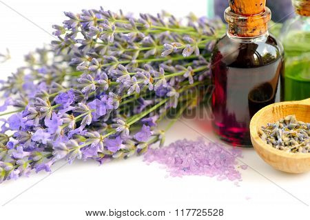 Lavender Fresh Flowers And Lavender Oil On White Background