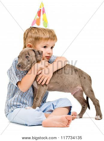 Cute boy hugging a pit bull puppy