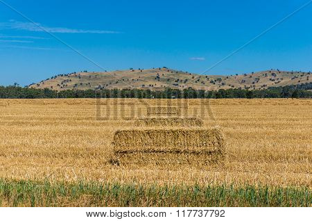 Agricultural Landscape. Haystacks In A Rural Landscape