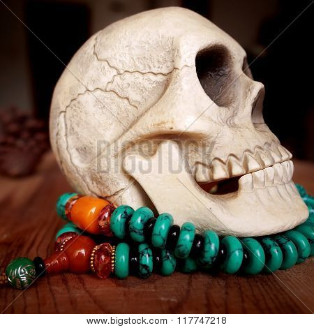 Close up of Human skull model on beads