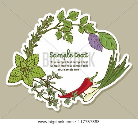 Vector frame with spices and herbs. Illustration with place for text, can be used creating card, menu or invitation card.