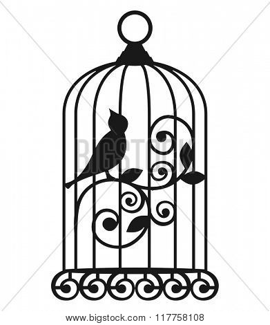 The Birdcages. Vector.