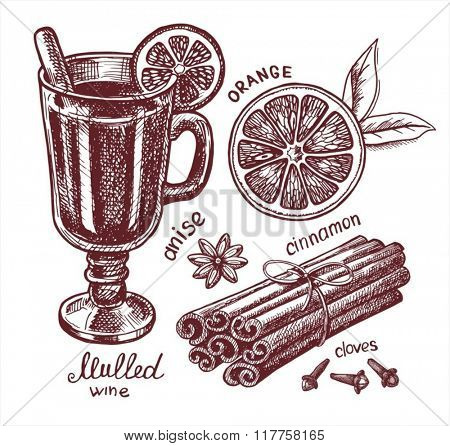 Set of mulled wine, fruit and spices. Hand-drawn illustrations