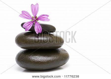 Zen balance.