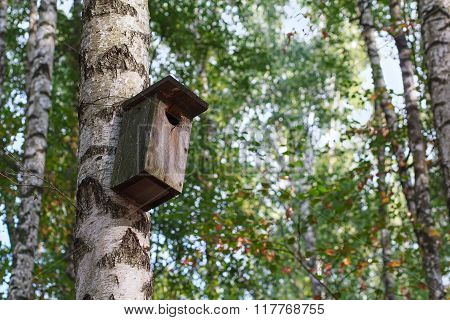 Old Wooden Birdhouse Hanging On A Birch Tree In The Park