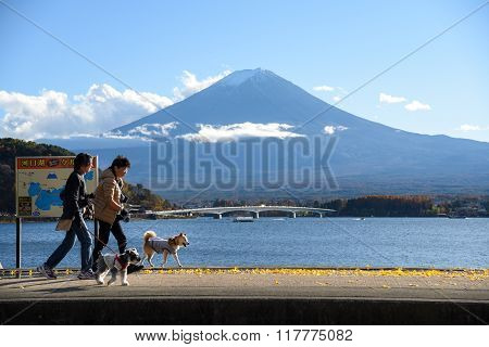 Life Around Kawaguchi  Lake Near Mount Fuji, Japan
