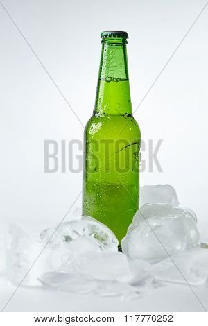 beer bottle in the ice