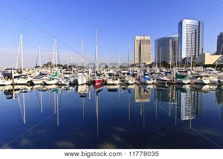 San Diego Yachts And City Skyline