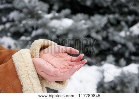 Snow falls on women's hands, winter season concept