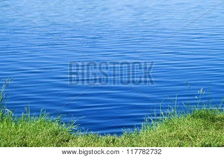 Green grass and blue lake water