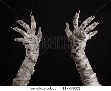 Halloween Theme: Terrible Old Mummy Hands On A Black Background