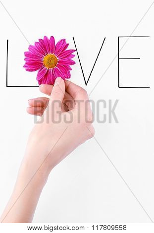 Inscription love with pink flower and hand on white background