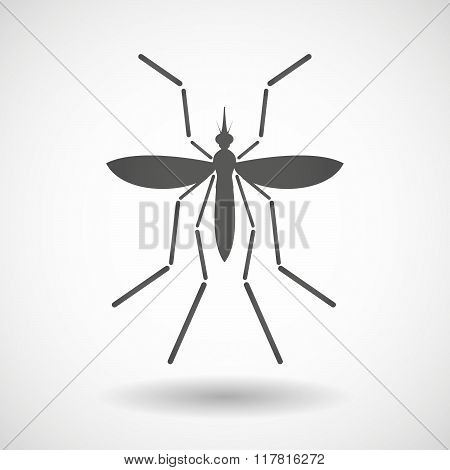 Zika Virus Bearer Mosquito On A Blank Background
