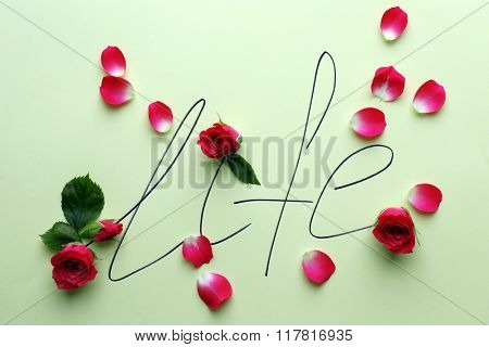 Inscription life with pink roses on green background