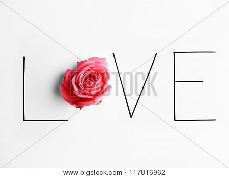 Inscription love with pink rose on white background