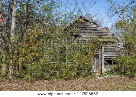 Old Abandoned Shed In Rural Georgia