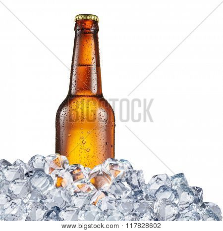 Cold bottle of beer in the ice cubes. File contains clipping paths.