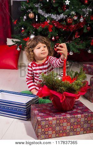 Toddler Boy Under Christmas Tree