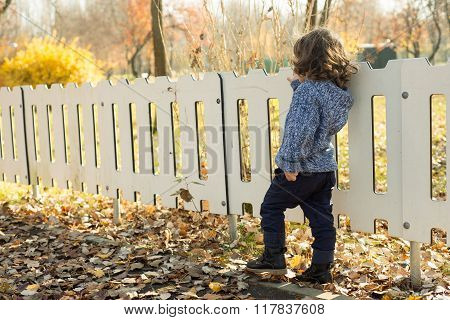 Back Of Toddler Boy By Fence