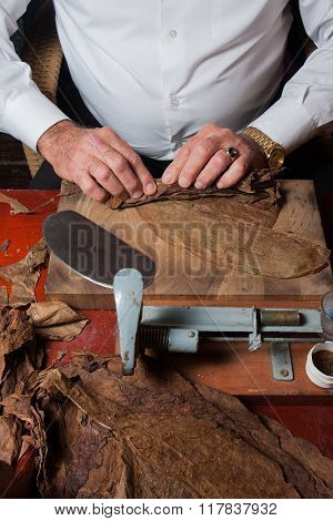 Torcedor rolling hand made cigars parejos