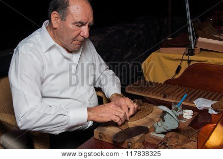 SPAIN, TENERIFE, ABAMA RITZ, FEBRUARY 2016: Torcedor rolling hand made cigars parejos using traditio