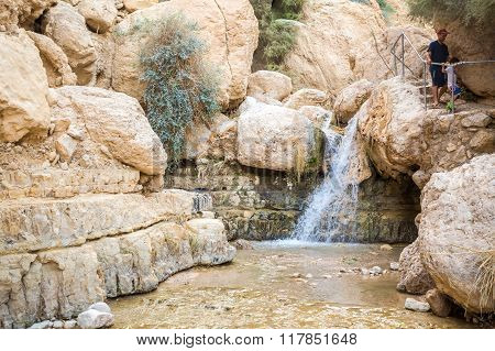 Small Waterfall In En Gedi Nature Reserve And National Park