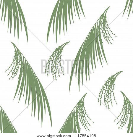Seamless pattern berries and leaves of Acai palm . Floral background. Vector illustration.  Green si