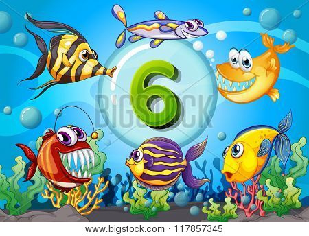 Flashcard number six with 6 fish underwater illustration