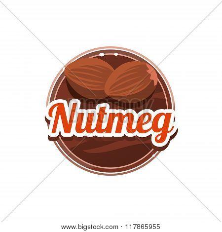Nutmeg Spice. Vector Illustration.