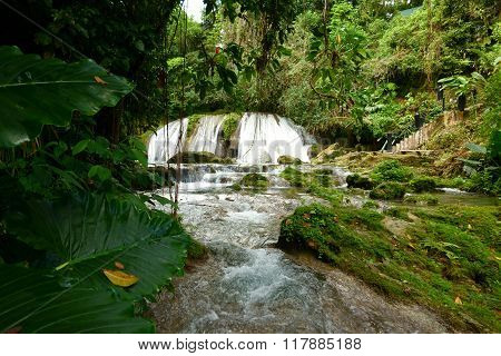 Reach Falls and lush rain forest in Portland parish, Jamaica