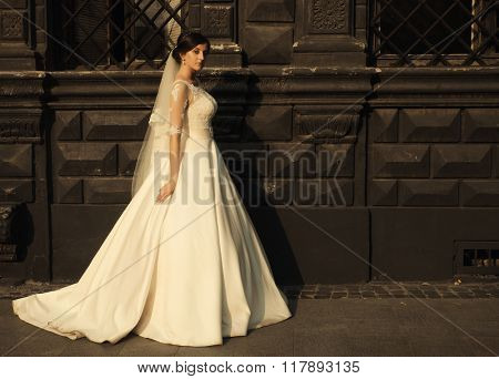 Beauty woman bride in white amazing wedding dress