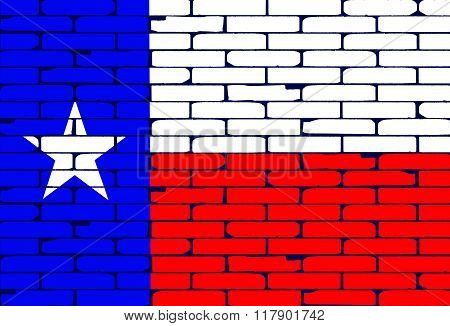 Texan Painted Wall Flag