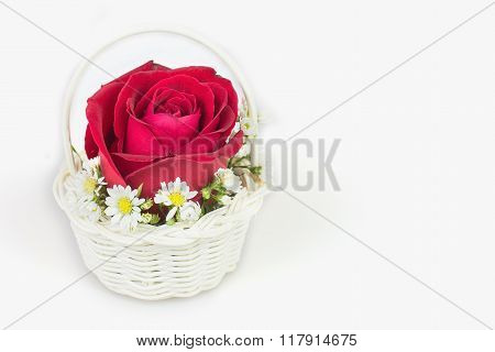 Red Rose Gift Card