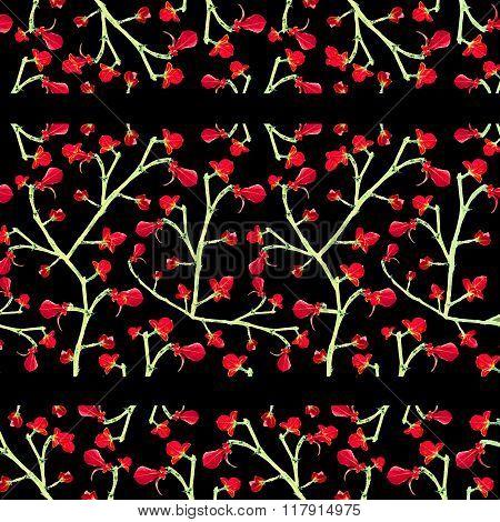 Floral Lace Stripes Pattern