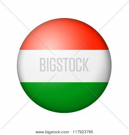 The Hungarian flag