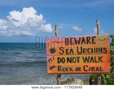 Beware Of Sea Urchins Sign By The Sea
