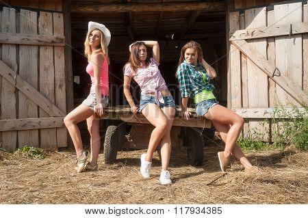 Young beautiful women on cart