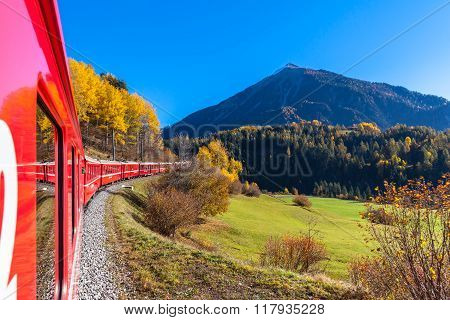 Travel With Train In Golden Autumn