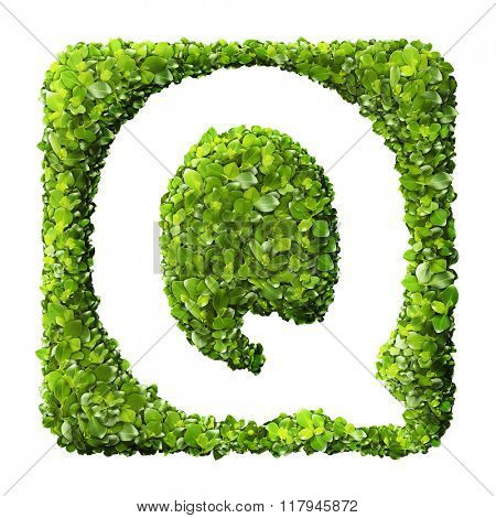 Letter Q made of green leaves isolated on white