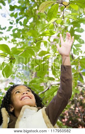 Girl reaching up to leaves