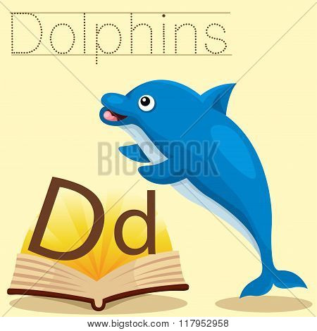 Illustrator of d for dolphins vocabulary