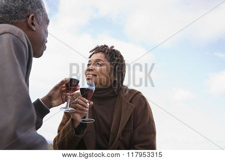 One couple toasting