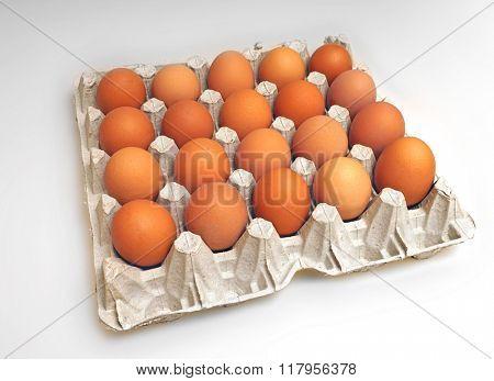 Chicken eggs in cardboard package