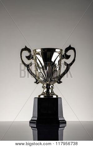 Winning Trophy Championship Award