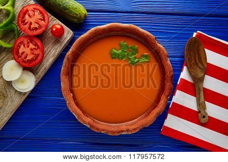 Gazpacho andaluz is a fresh tomato soup and vegetables of Andalusian Spain