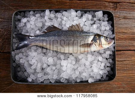 Sea bass fresh fish on ice tray and wooden table
