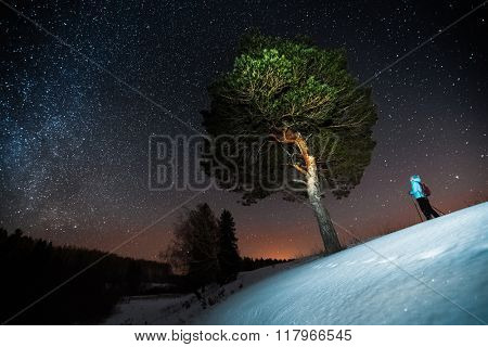Woman skiing at night in a winter forest and looking to a big tree and starry sky