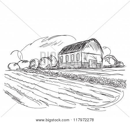 Landscape with agrarian fields and village house.