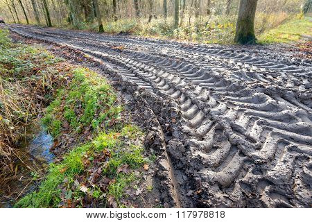 Big Tire Marks On A Slippery Path In The Woods